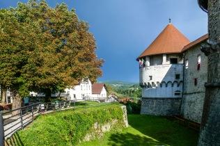 1 Slovenian Castle