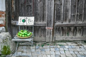13 Very Local fruitJPG