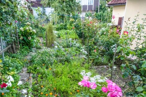 2 Residnet Garden