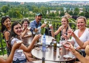 3 St Klara vineyard
